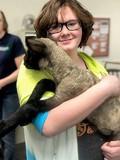 Female student holding lamb